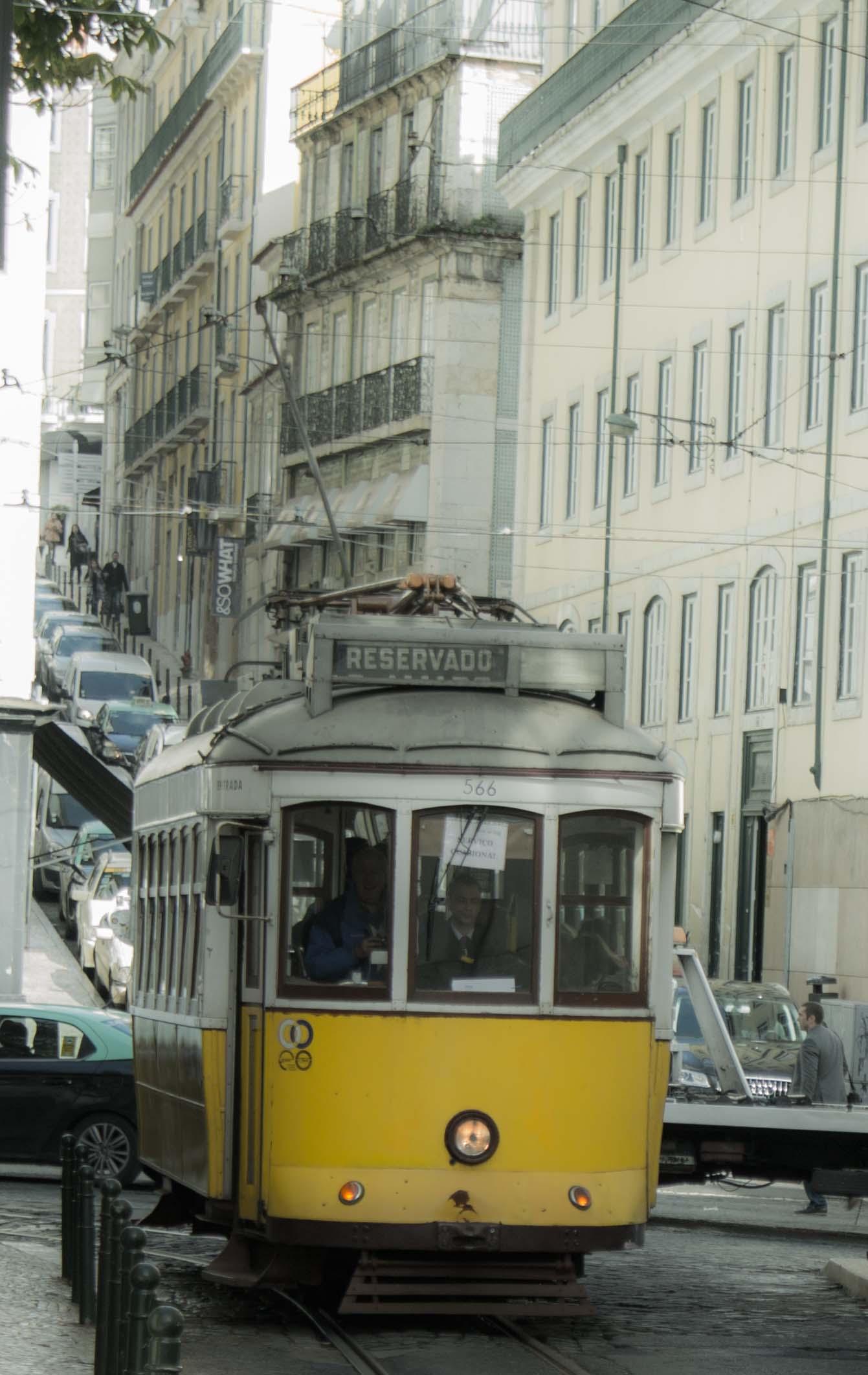 Linie28